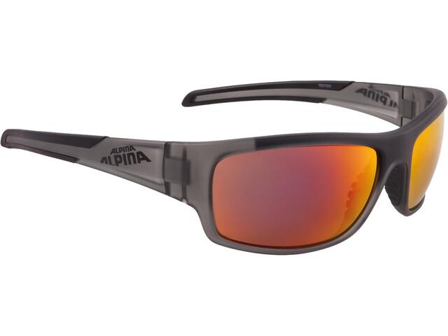 Alpina Testido Cykelglasögon grå/transparent